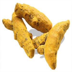turmeric_root__essential_oil_manufacturer_distributor_supplier_exporter_wholesalers_in_kannauj_kanpur_delhi_mumbai_india